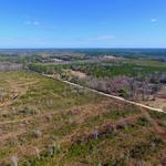 42.58 Acres With Great Potential thumbnail image