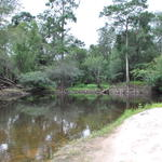 680 Acres River Tract for the Recreational Enthusiast thumbnail image