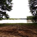 Altamaha River Cabin at Eason Bluff thumbnail image