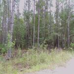 Satilla River Area Homesite Lot 2 thumbnail image