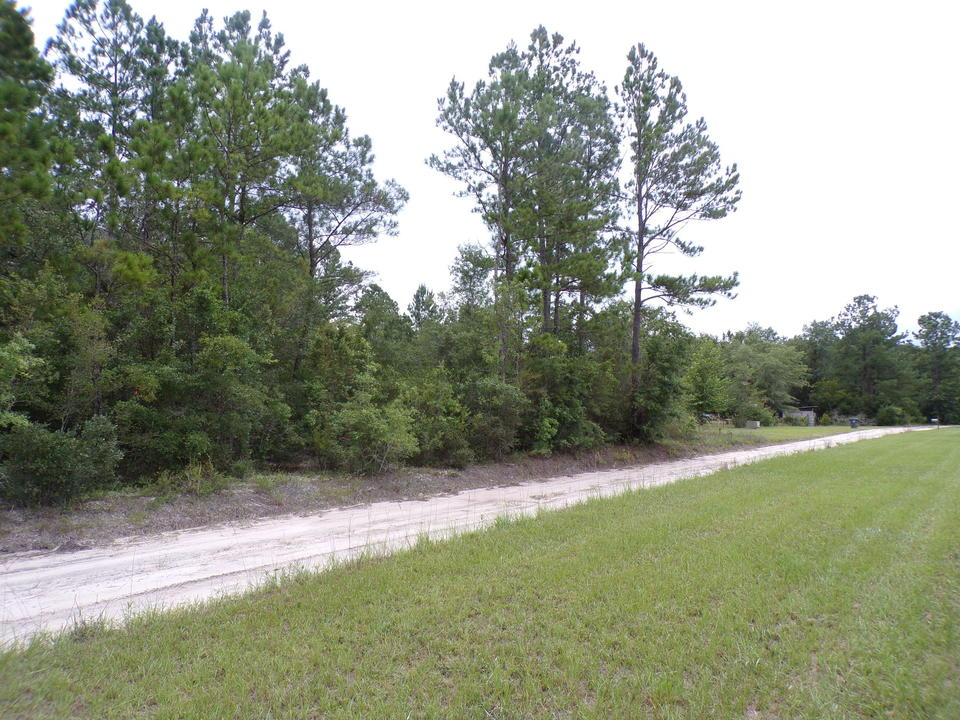 Satilla River Area Homesite Lot 9 main image