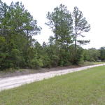 Satilla River Area Homesite Lot 9 thumbnail image