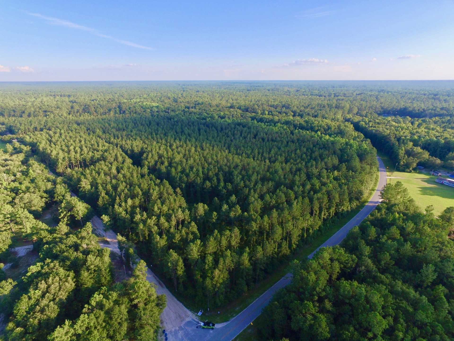 64.34 Acre Outer Hole Creek Tract image