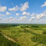 98.21 Acre Horse Creek Rd  thumbnail image