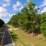 98.21 Acre Horse Creek Rd  thumbnail image
