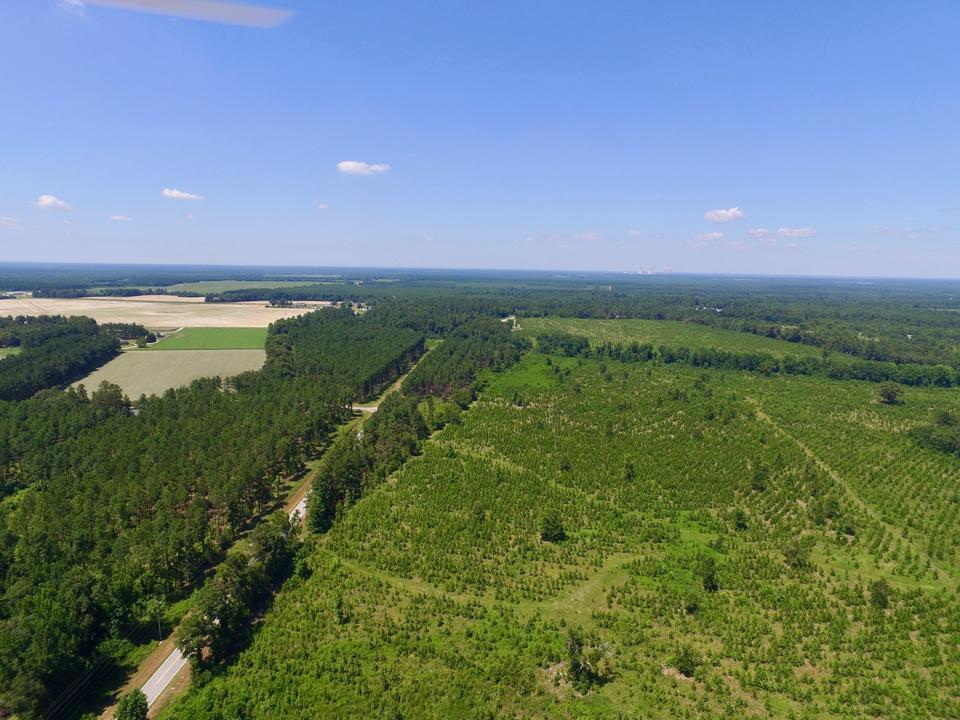 133.47 Acres Burke County, GA main image