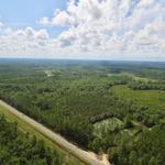 381 Acres in Long County, GA thumbnail image
