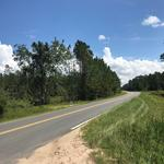 46+ Acres on Elim Church Rd thumbnail image