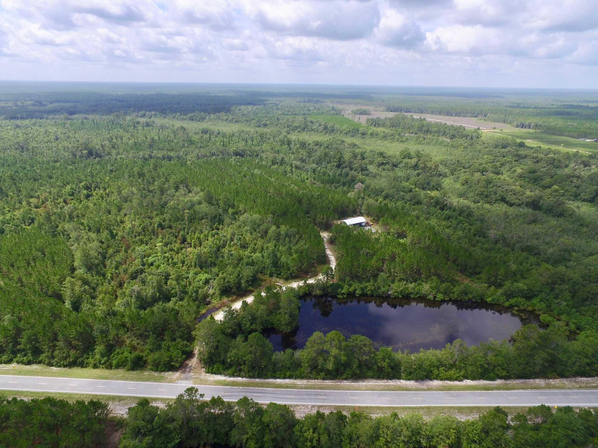 420 Acres  Suwanoochee Creek Plantation image