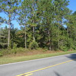 Homesites Available in Tank Road Community thumbnail image