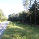 Homesite on Tank Rd thumbnail image