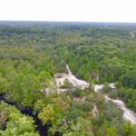 435 Acres Satilla River Bluff Tract thumbnail image