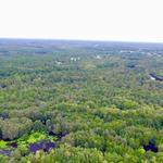 435 Acres Satilla River Bluff Tract thumbnail image