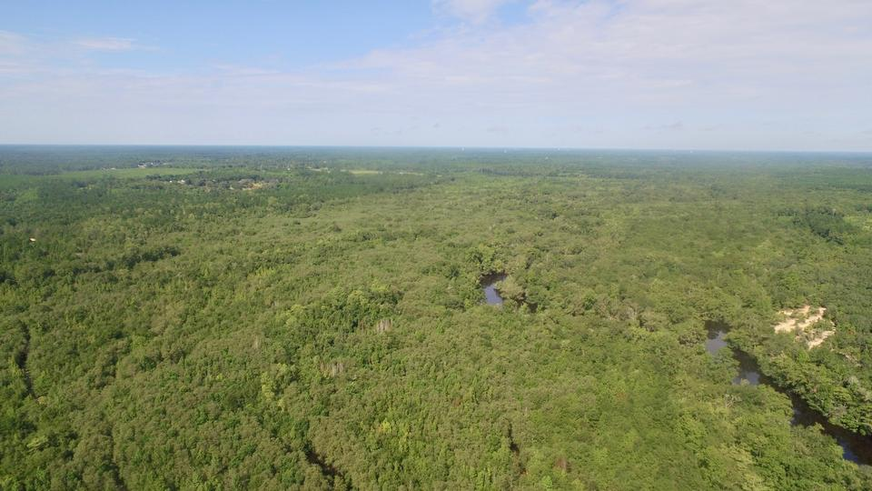 245 Acres Waterfront Deal! image