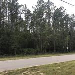 Affordable Homesite in Jesup - Owner Financing thumbnail image