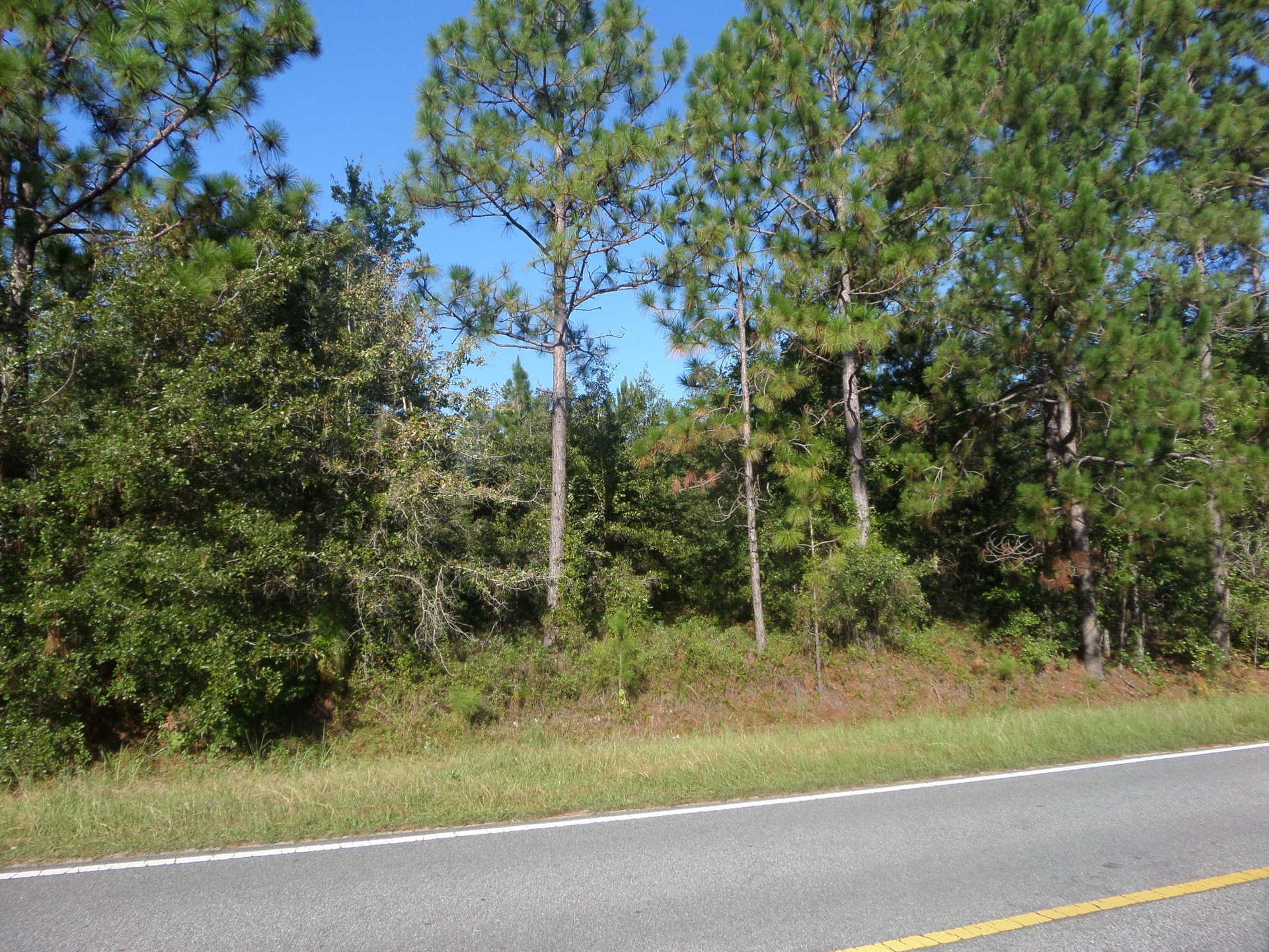 40 Acres Available, Tank Rd Community image