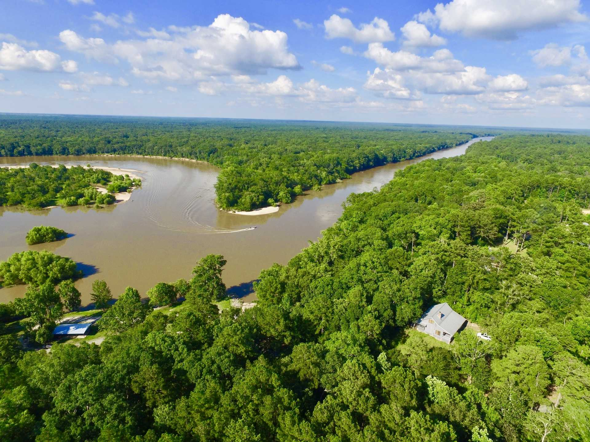Altamaha River Cabin at Eason Bluff image