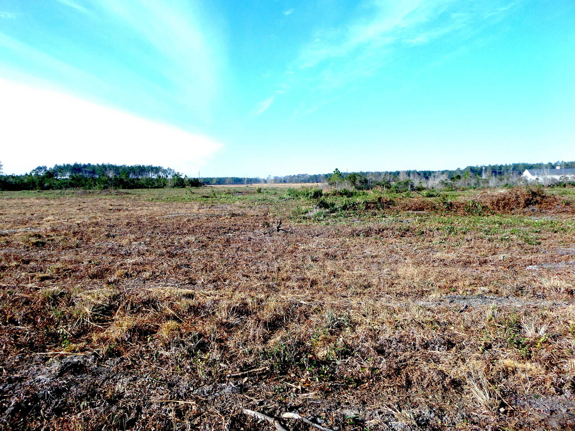 Homesite, Pastureland, MORE located near Odum, GA image