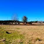 Idyllic 38 Acre Gentleman Farm in Screven, GA thumbnail image