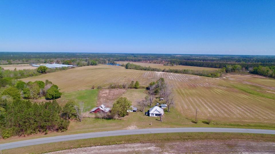 Plantation Farm Offers Pastureland and Cultivation image