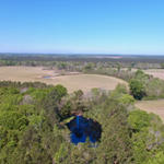Plantation Farm Offers Pastureland and Cultivation thumbnail image