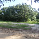 Home Place, Pasture or Recreation Piece on Lambert Bennett Rd thumbnail image