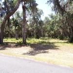 Coastal Homesite at Shellman Bluff thumbnail image