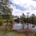 2710 Beechwood Dr. Pond House thumbnail image