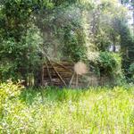 Nostalgic Homesite on Goose Creek Hill thumbnail image
