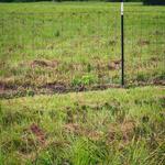 1115 Bear Branch Road thumbnail image