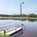 1300 Lake Lannell thumbnail image