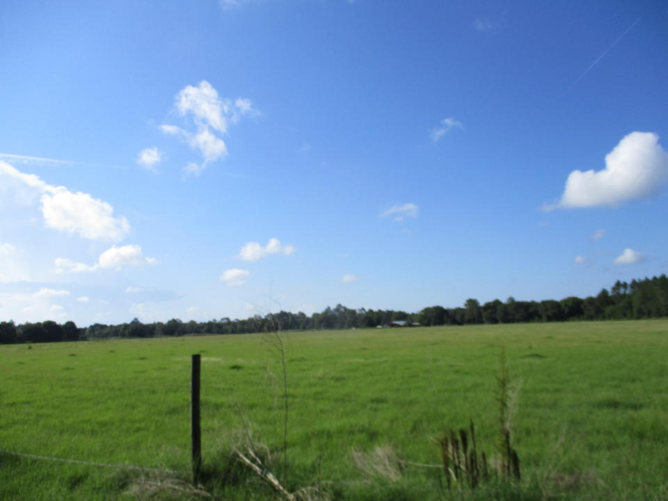 490 Acres in Pierce County with River Frontage  main image