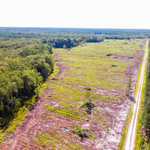 Large Acreage Tract Ideal for Hunting, Investment thumbnail image