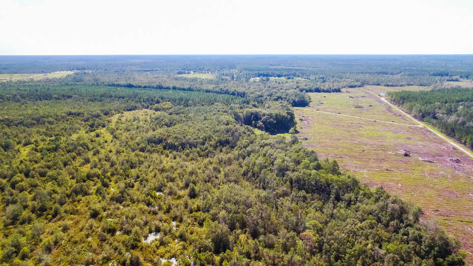 Large Acreage Tract Ideal for Hunting, Investment main image