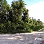2 Acres 6th Ave. Waycross thumbnail image
