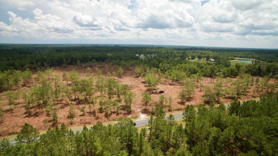 17 Acres Near Hinesville, GA main image