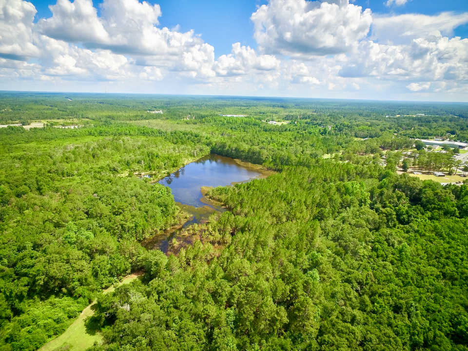 Ideal Recreational Tract with 6 Acre Pond main image