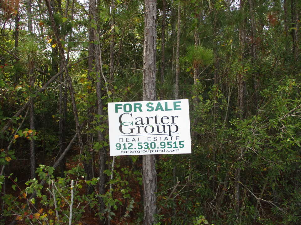 59+ Acres in Ware Perfect for Homesite or Recreation main image