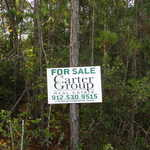 59+ Acres in Ware Perfect for Homesite or Recreation thumbnail image