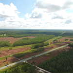 5 Acre Homesite with Owner Financing! thumbnail image