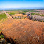 Perfect 3-Acre Homesite on Moody Bridge Rd thumbnail image