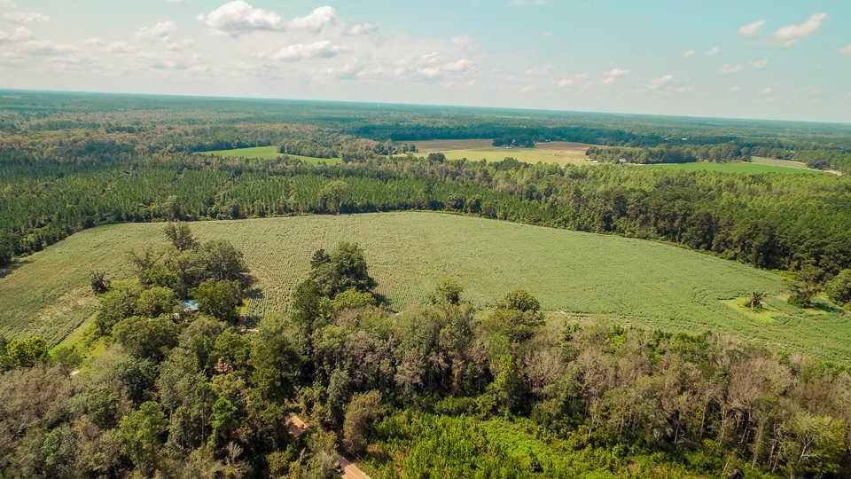 107 Acre Gentleman Farm main image