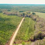 107 Acre Gentleman Farm thumbnail image