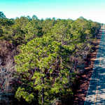 Homesite on S. Forest Dr thumbnail image