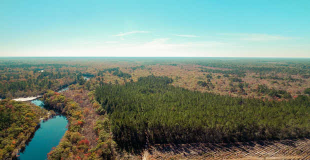 Satilla River Sanctuary image