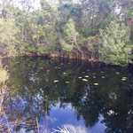 310 Outback Loop  thumbnail image