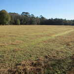 29 Acres Turner Road Ware County, GA thumbnail image