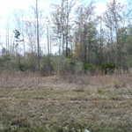 GARDI/BROADHURST ROAD thumbnail image