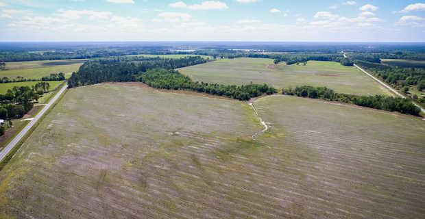 Working Farm Land Under Pivot  image