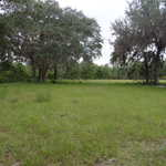 Homesite on Birchwood Rd thumbnail image